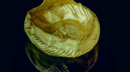 Bronze Age golden vessel